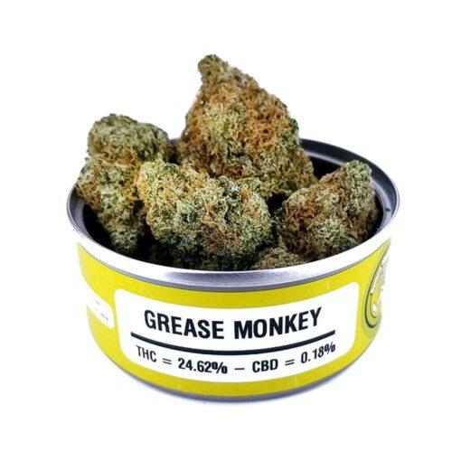 Buy Grease Monkey Strain